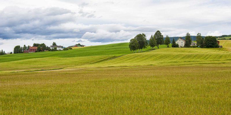 Framtidsrettet landbruk